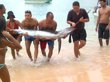sosua deepsea fishing 2
