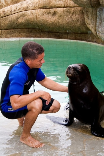 Enjoy inter acting with Sealions at Ocean World